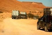 Tunisie : La contrebande et l'informel nuisibles à l'économie nationale